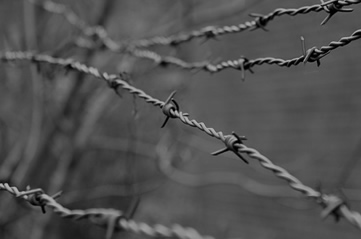 barbedwire - See how a World War changed the world. [ATTDT]