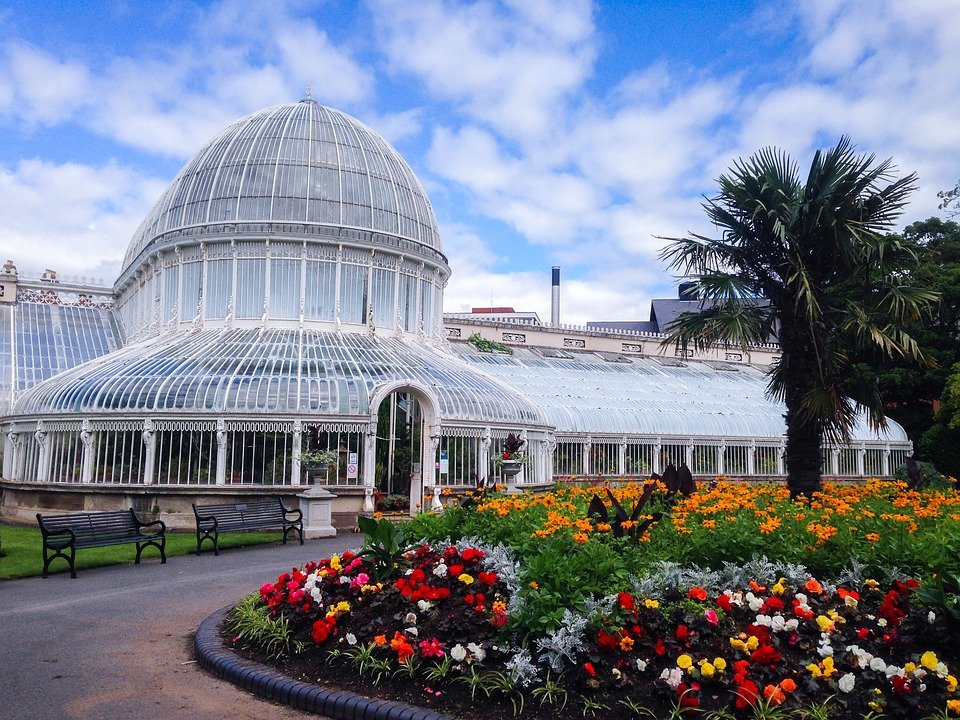 belfastbotanicgardens - Bask in the tropics at the Botanic Gardens. [ATTDT]