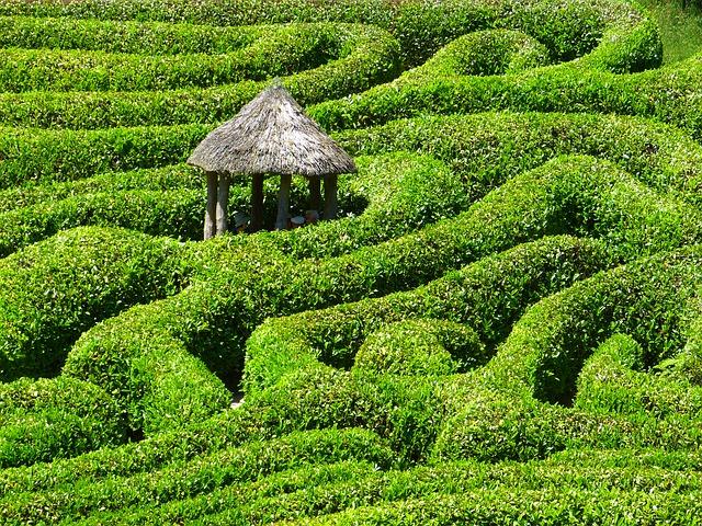 glendurganmaze - Get lost in the gardens at Glendurgan. [ATTDT]