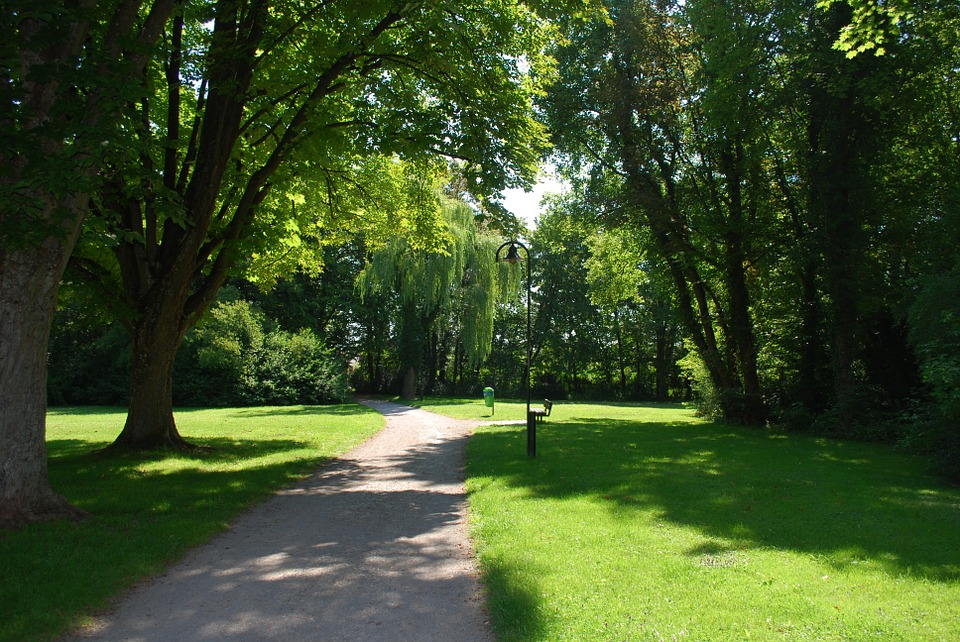 parktrees - Discover the story of Morden Hall Park. [ATTDT]