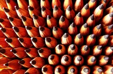 pencils - Be drawn to the Pencil Museum. [ATTDT]