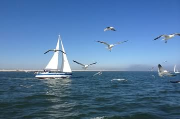 sailingboat - Explore the history of Boston Harbor. [ATTDT]