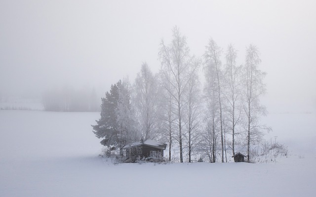 snowfieldcabin - Hear an orchestral expression of winter. [ATTDT]
