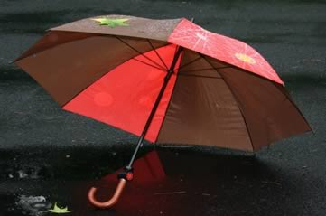 umbrella - It's St Swithun's Day. Look out for rain. [ATTDT]