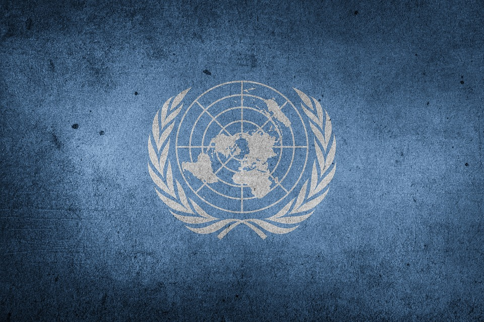 unitednationsflag - Tour the UN. [A Thing To Do Tomorrow]