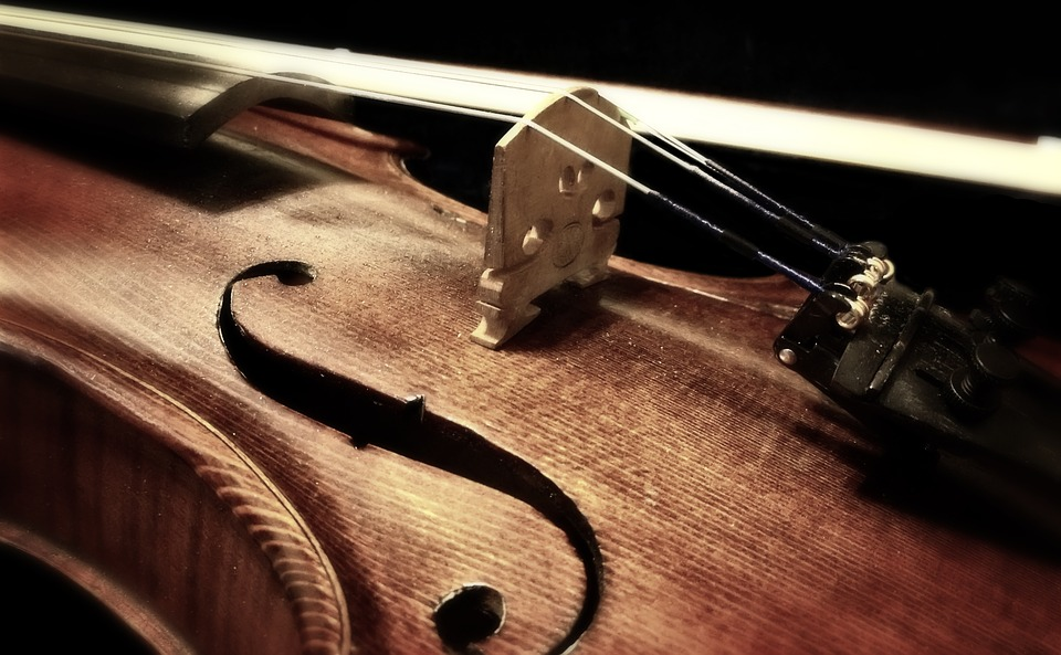violin - Inspect intriguing instruments at the Music Museum. [ATTDT]