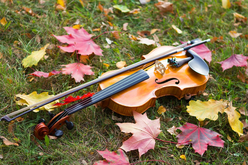 violinautumnleaves - Hear the orchestral sound of the season. [ATTDT]